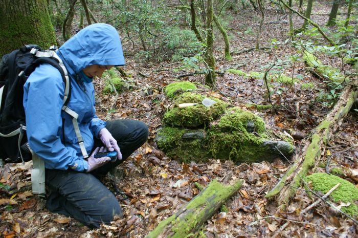 reconnaissance soil survey